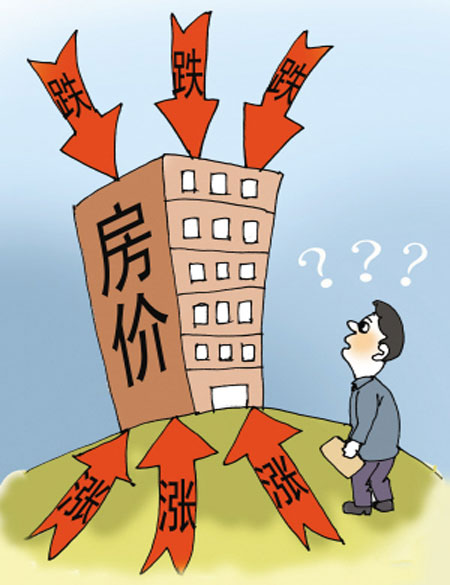 未来人口减少房价会跌吗_人口普查