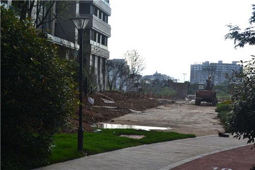 绿植施工即将完成,小区围墙施工中.图片